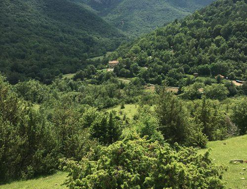 Panoràmica des del camí de l'Ermita de Salarsa